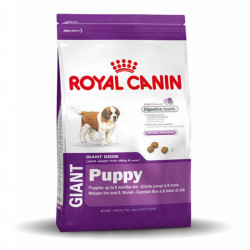 ROYAL CANIN GIGANTE PUPPY 15K